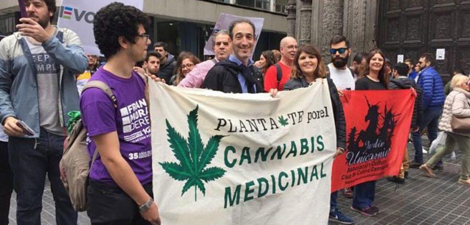 Diputados porteños y familiares se plantaron por el cannabis medicinal